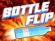 Play Bottle Flip Game Online