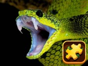 Play Snake Puzzle Challenge Game on FOG.COM