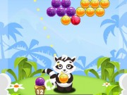 Play Bubble Shooter Raccoon Game on FOG.COM