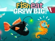 Play Fish Eat Grow Big Game on FOG.COM