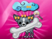 Play Funny Doggy Hidden Bones Game on FOG.COM