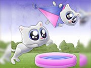 Play Extreme Kitten Game on FOG.COM