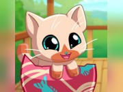 Play My Pocket Pets: Kitty Cat Game on FOG.COM