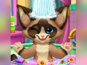 Play Kitten Bath Game on FOG.COM